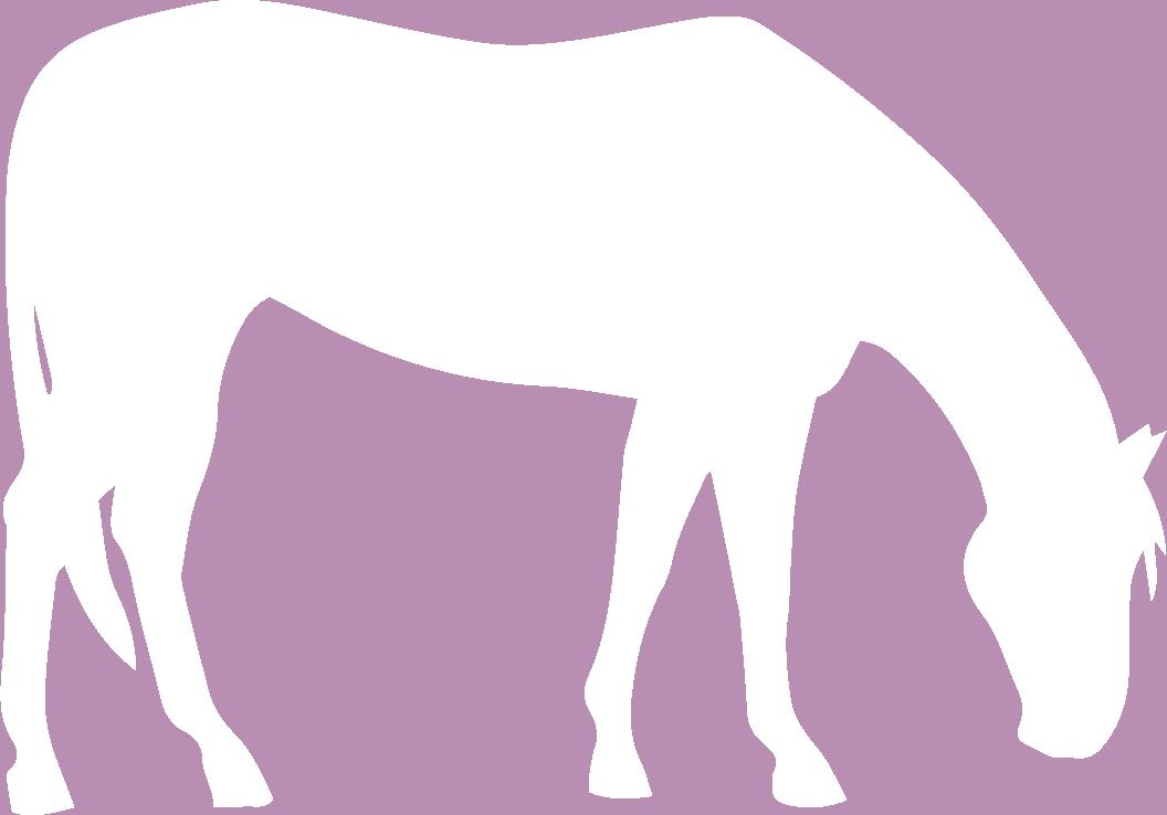 horse-sil-white